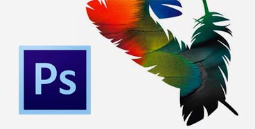 <a href=/formacion/curso-adobe-photoshop/17 title=Curso Adobe Photoshop>Curso Adobe Photoshop</a>